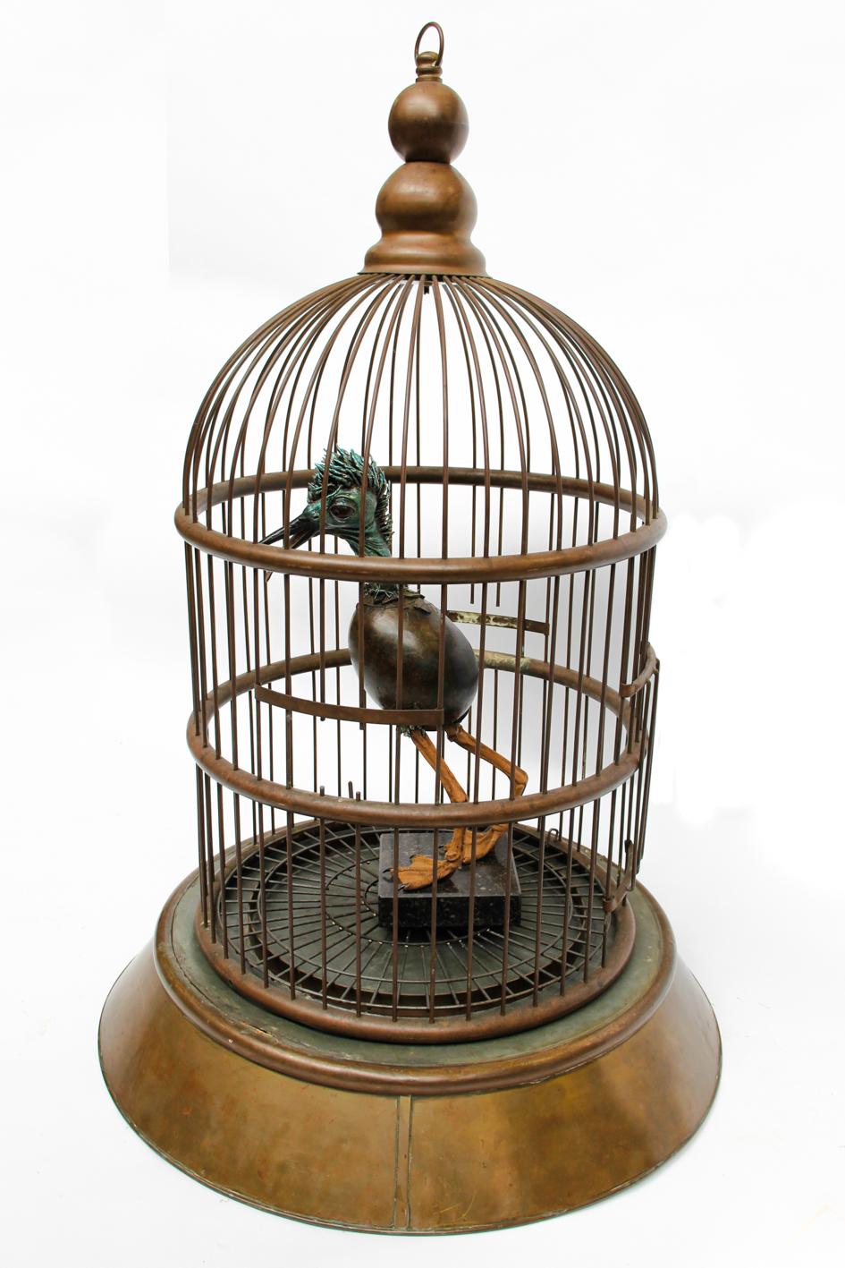 Vogel in kooi